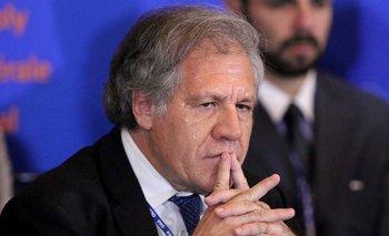La OEA no tiene el informe sobre las elecciones en Bolivia | Golpe en bolivia