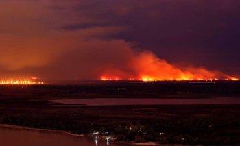 Incendios en el Delta: la UIF se convirtió en querellante | Paraná
