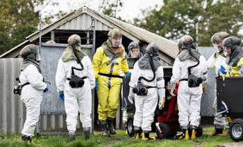 Dinamarca sacrifica millones de visones por una mutación de coronavirus | Animales