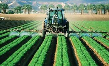 Proyecto agrícola y social en Argentina: la experiencia de Israel | Campo