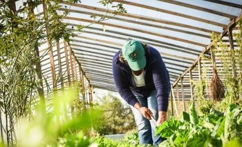 Juntos por el Cambio rechazó un proyecto de soberanía y seguridad alimentaria | Legislatura bonaerense