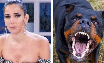 El día que Juana Viale y Arturo Puig casi son devorados por un Rottweiler | Televisión
