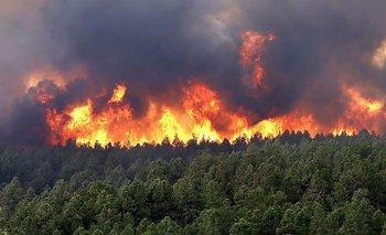 Preocupación por nuevos focos de incendios en Misiones y Corrientes | Incendios