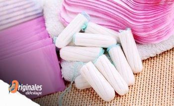 En San Luis y Catamarca es ley la gestión menstrual    Menstruación
