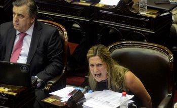 """El desaforado discurso de una diputada oficialista: le dijo """"tiranos"""" a los que votaron la reforma de Ganancias   Impuesto a las ganancias"""
