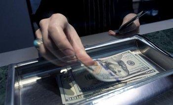 En noviembre se redujo un 12% la compra de dólares para atesoramiento | Dólar ahorro